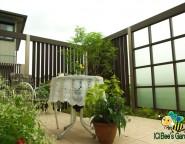 手付かずの中庭・・・タイルテラスと+Gによる目隠し